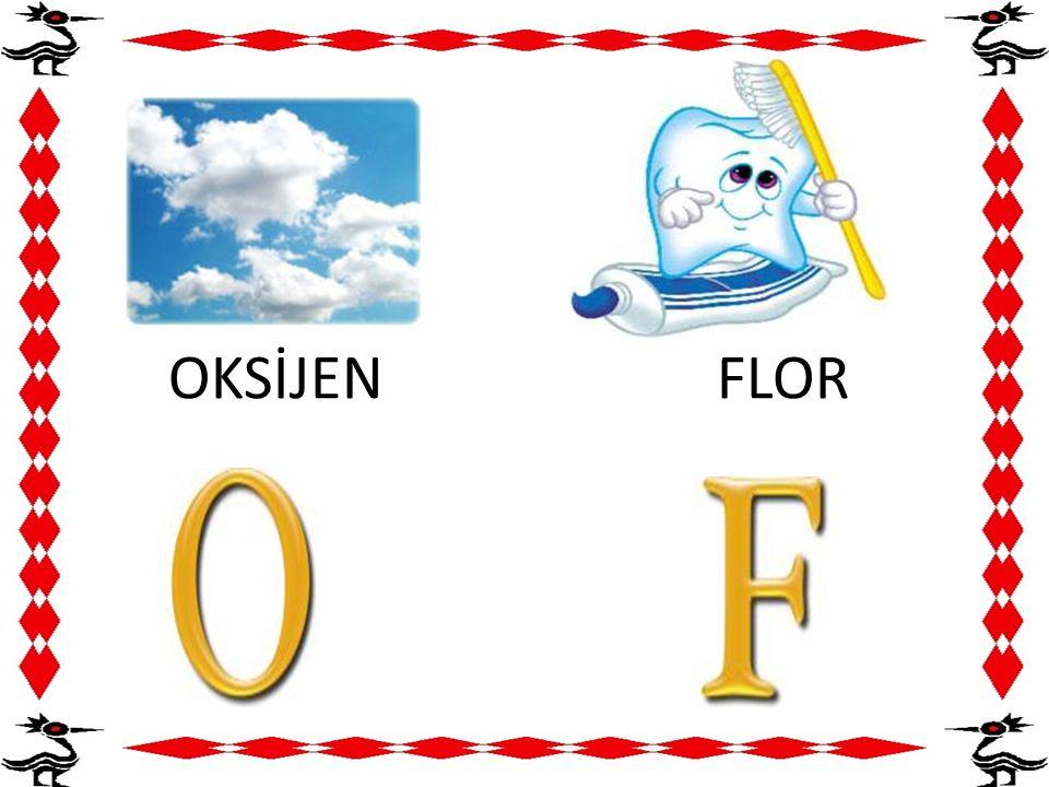 OKSİJEN FLOR