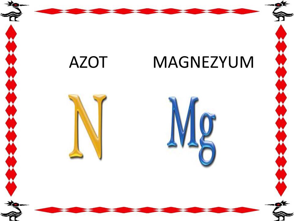 AZOT MAGNEZYUM