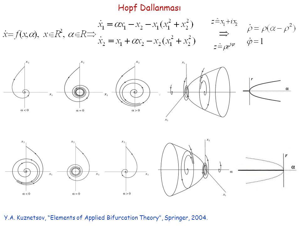 "Hopf Dallanması Y.A. Kuznetsov, ""Elements of Applied Bifurcation Theory"", Springer, 2004."