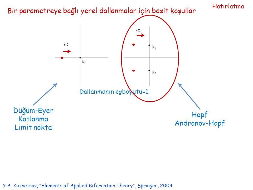 Bir parametreye bağlı yerel dallanmalar için basit koşullar Y.A.