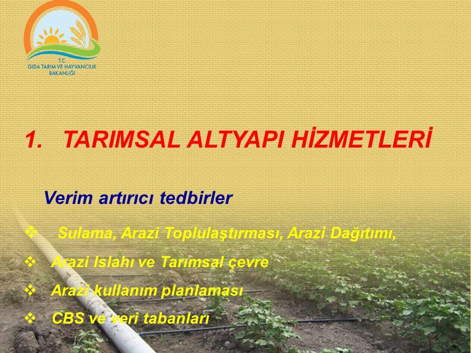 1.TARIMSAL ALTYAPI HİZMETLERİ Verim artırıcı tedbirler  Sulama, Arazi Toplulaştırması, Arazi Dağıtımı,  Arazi Islahı ve Tarımsal çevre  Arazi kulla