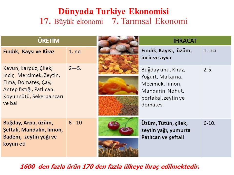 Dünyada Turkiye Ekonomisi 17. Büyük ekonomi 7. Tarımsal Ekonomi İHRACAT Fındık, Kayısı, üzüm, incir ve ayva 1. nci Buğday unu, Kiraz, Yoğurt, Makarna,