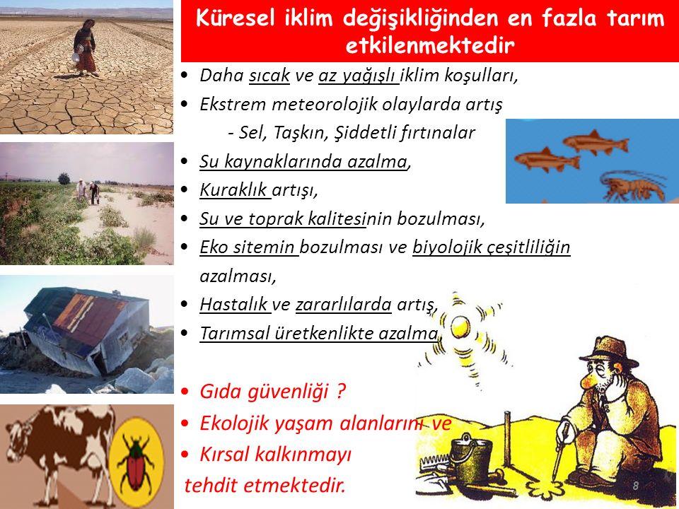  Turkiye Tarım Sigorta Sistemi Kuruldu (Tarsim) Ürün Sigortası Sera Sigortası Hayvancılık Sigortası Tavukçuluk Sigortası Su ürünleri sigortası  Sigorta primlerinin % 50 si devlet tarafından destek olarak ödenmektedir.
