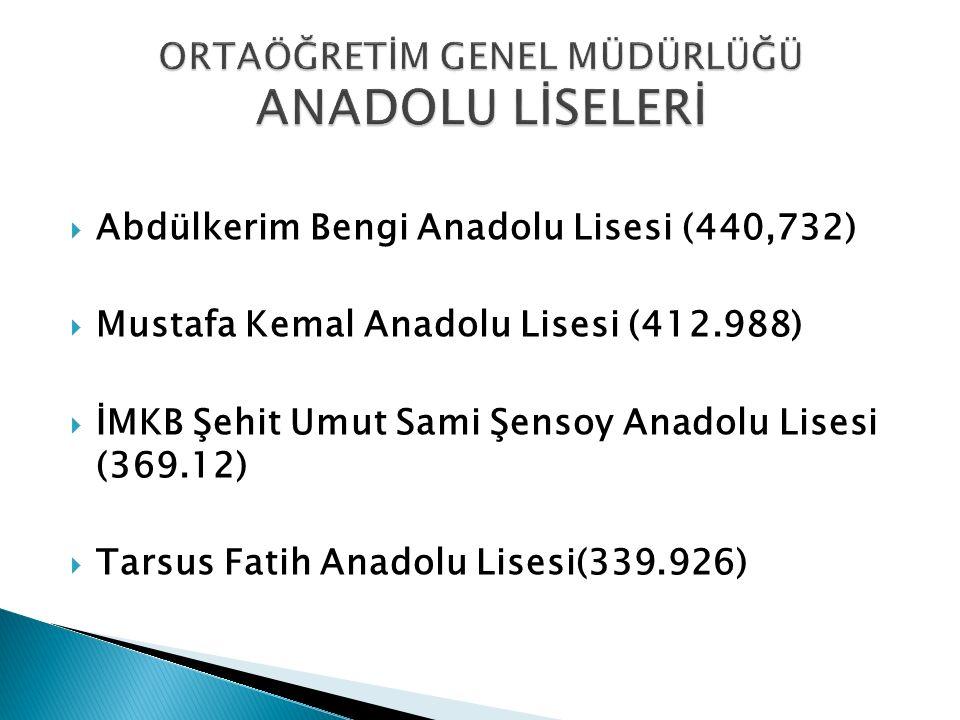  Abdülkerim Bengi Anadolu Lisesi (440,732)  Mustafa Kemal Anadolu Lisesi (412.988)  İMKB Şehit Umut Sami Şensoy Anadolu Lisesi (369.12)  Tarsus Fa