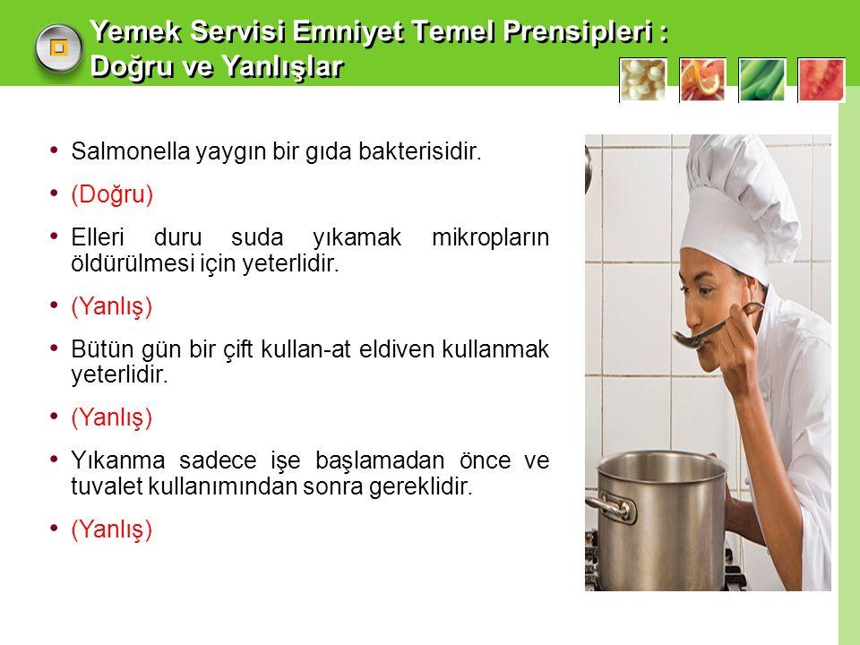 Yemek Servisi Emniyet Temel Prensipleri : Doğru ve Yanlışlar Salmonella yaygın bir gıda bakterisidir.