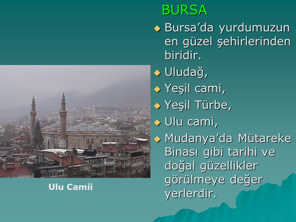 BURSA BURSA  Bursa'da yurdumuzun en güzel şehirlerinden biridir.  Uludağ,  Yeşil cami,  Yeşil Türbe,  Ulu cami,  Mudanya'da Mütareke Binası gibi
