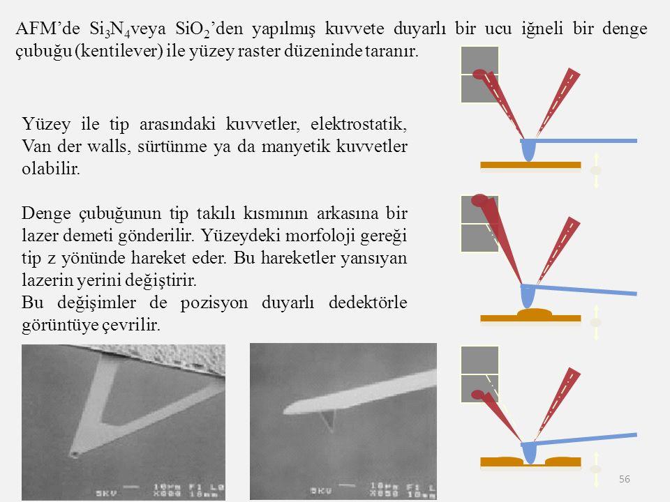 56 AFM'de Si 3 N 4 veya SiO 2 'den yapılmış kuvvete duyarlı bir ucu iğneli bir denge çubuğu (kentilever) ile yüzey raster düzeninde taranır. Yüzey ile