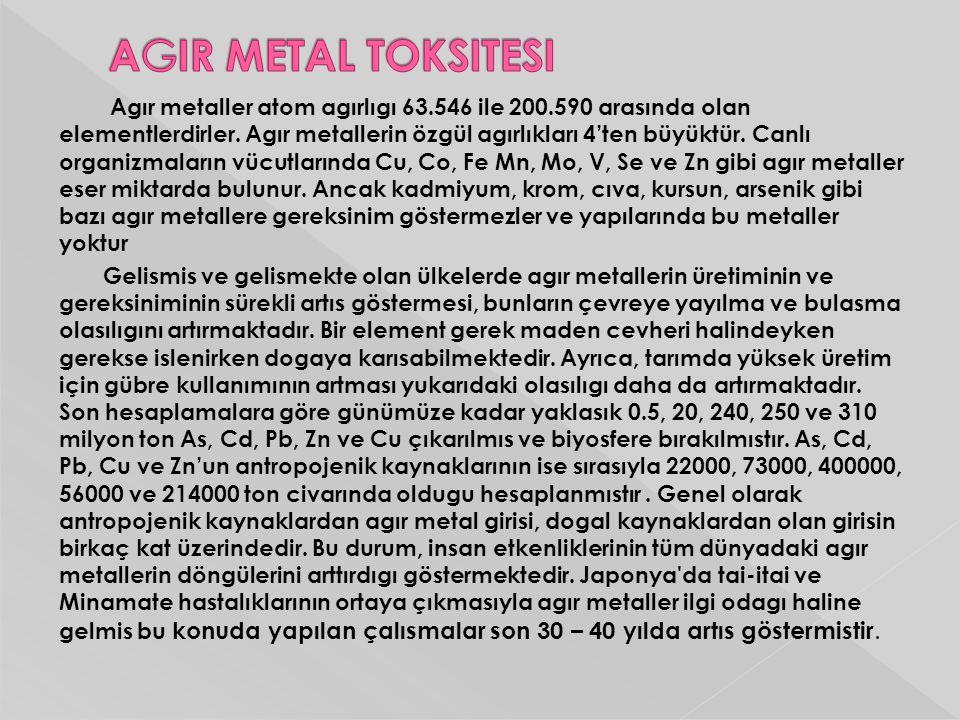 Agır metaller atom agırlıgı 63.546 ile 200.590 arasında olan elementlerdirler. Agır metallerin özgül agırlıkları 4'ten büyüktür. Canlı organizmaların