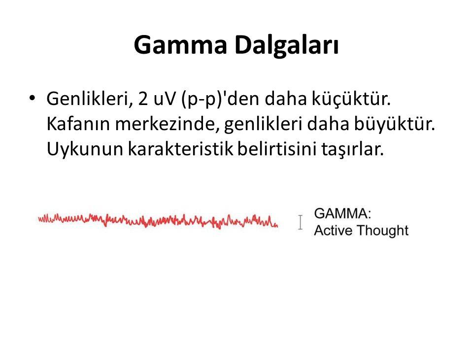 Gamma Dalgaları Genlikleri, 2 uV (p-p)'den daha küçüktür. Kafanın merkezinde, genlikleri daha büyüktür. Uykunun karakteristik belirtisini taşırlar.