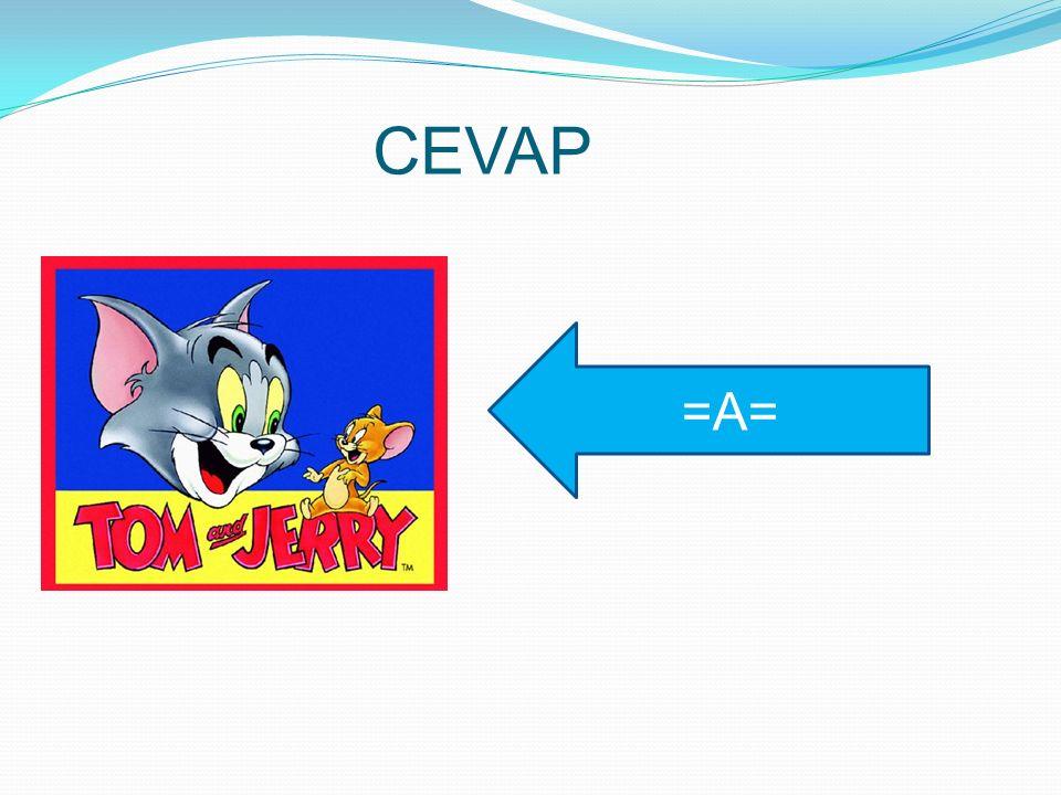 CEVAP =A=