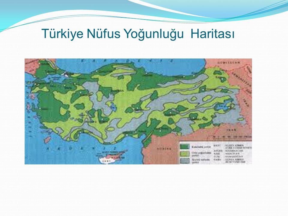 Türkiye Nüfus Yoğunluğu Haritası