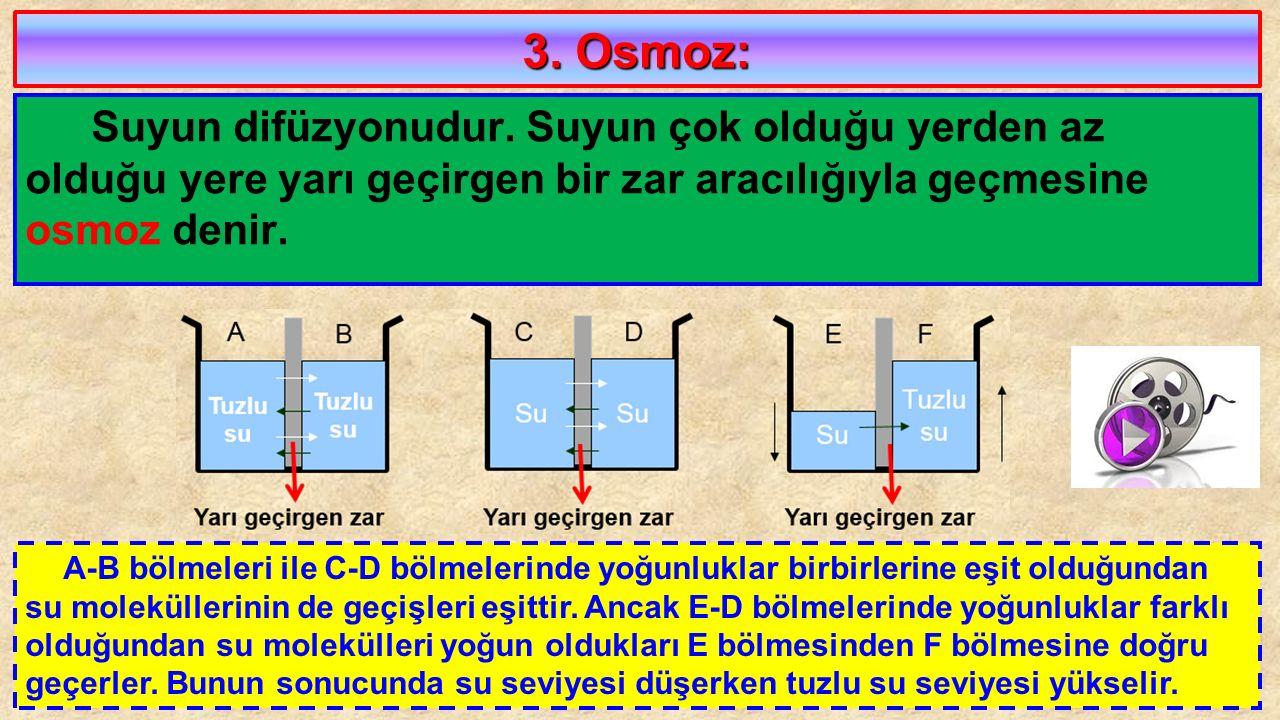 3. Osmoz: Suyun difüzyonudur. Suyun çok olduğu yerden az olduğu yere yarı geçirgen bir zar aracılığıyla geçmesine osmoz denir. A-B bölmeleri ile C-D b