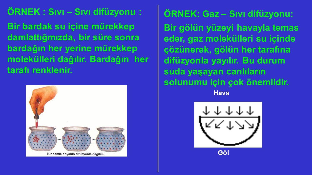 Endositozun Özellikleri: 1)Enerji (ATP) harcanır.2)Enzim kullanılır.