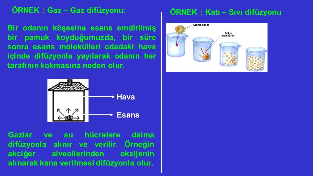 ÖRNEK : Gaz – Gaz difüzyonu: Bir odanın köşesine esans emdirilmiş bir pamuk koyduğumuzda, bir süre sonra esans molekülleri odadaki hava içinde difüzyo
