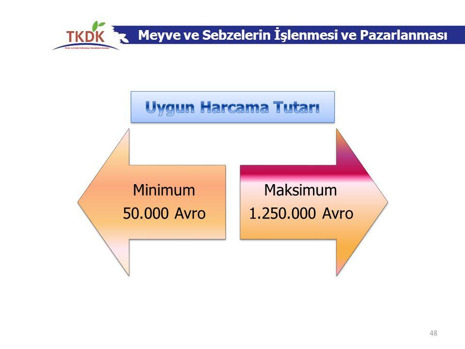 Minimum 50.000 Avro Maksimum 1.250.000 Avro Meyve ve Sebzelerin İşlenmesi ve Pazarlanması 48