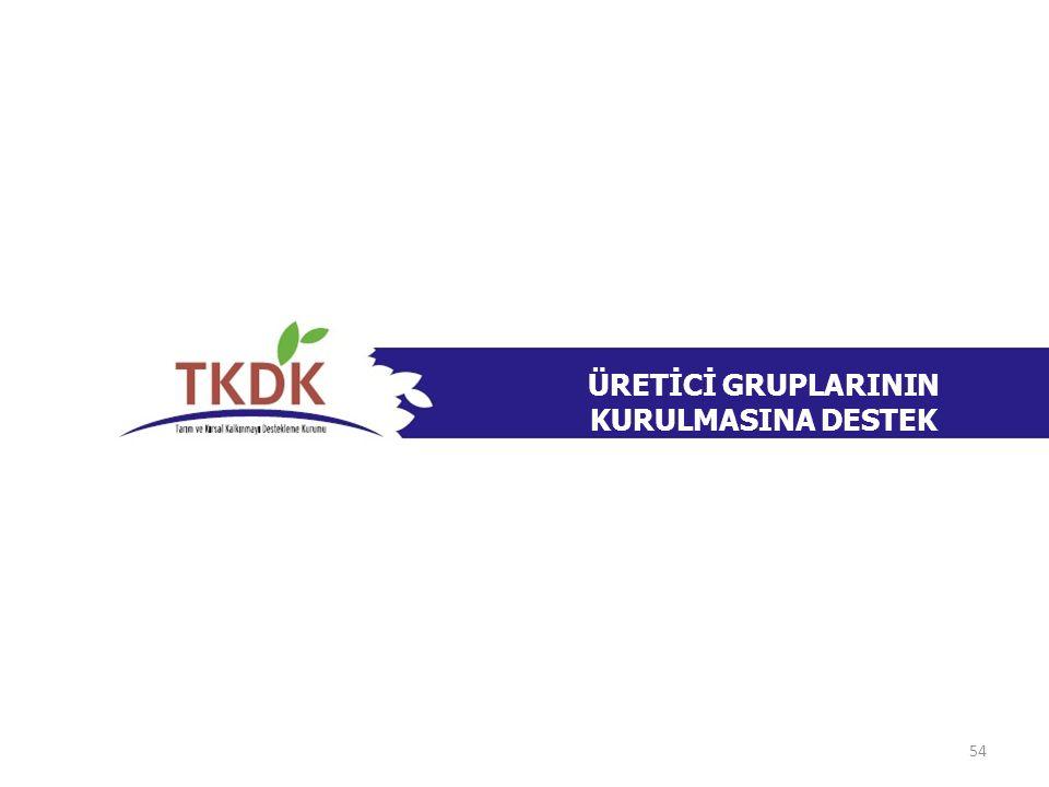 ÜRETİCİ GRUPLARININ KURULMASINA DESTEK 54