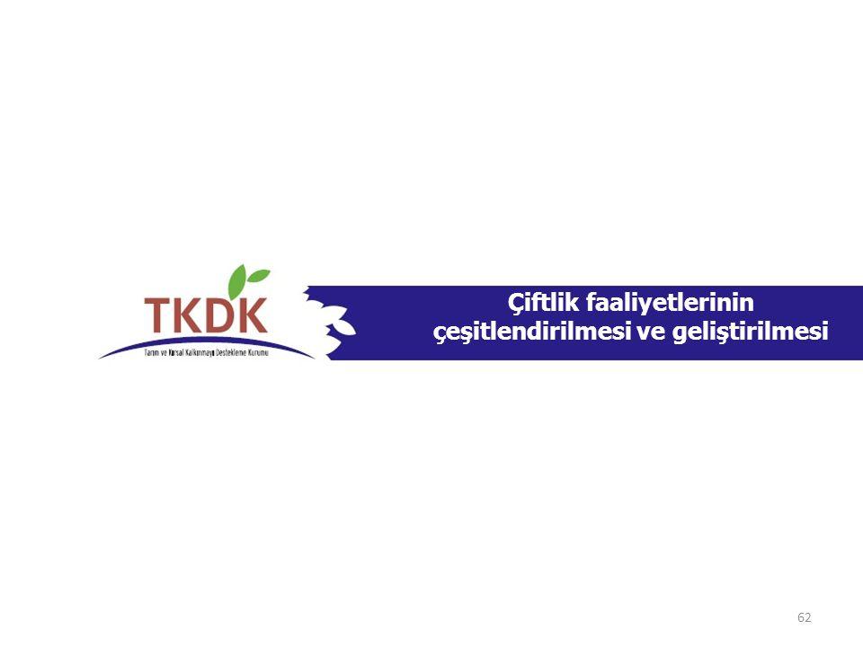 Çiftlik faaliyetlerinin çeşitlendirilmesi ve geliştirilmesi 62