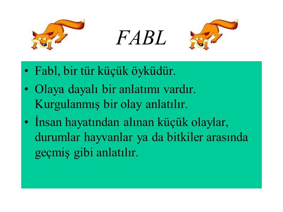 FABL Fabl, bir tür küçük öyküdür. Olaya dayalı bir anlatımı vardır. Kurgulanmış bir olay anlatılır. İnsan hayatından alınan küçük olaylar, durumlar ha