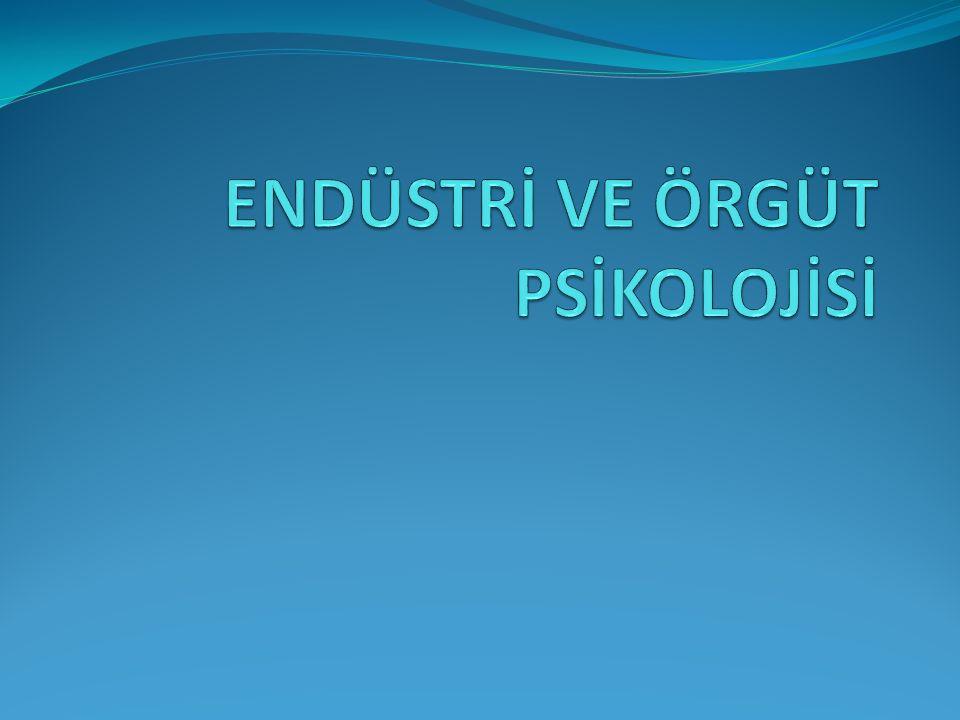 Endüstri ve örgüt psikolojisi nedir. İşyerindeki insan davranışını inceleyen psikoloji alanıdır.
