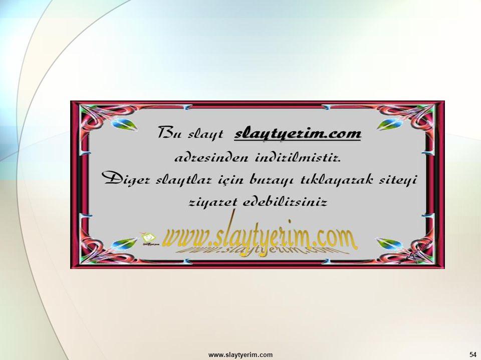 www.slaytyerim.com54