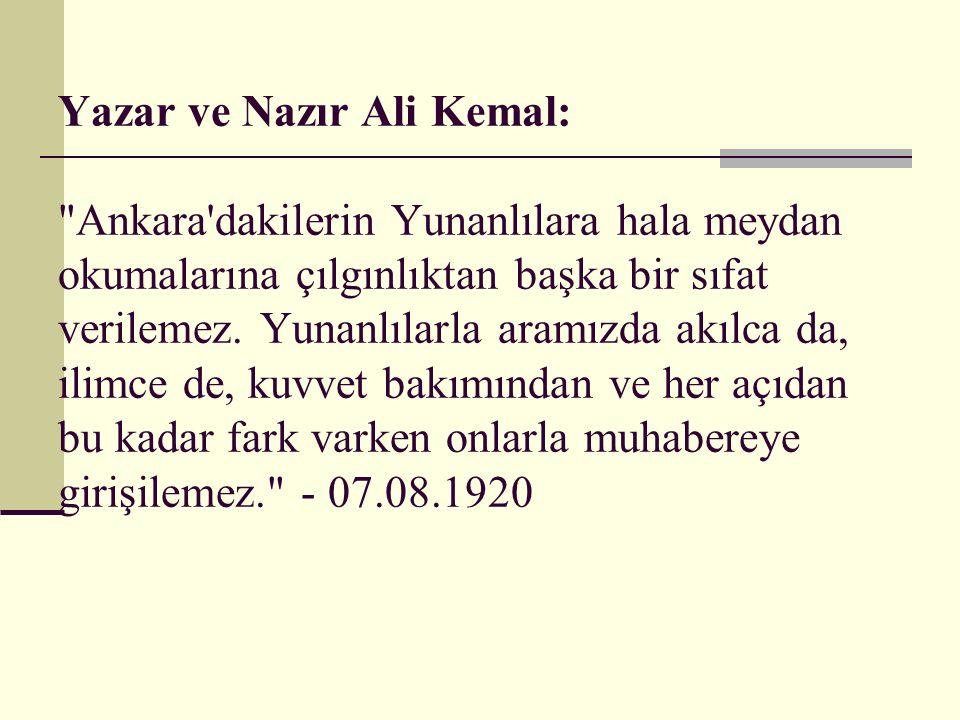 Yazar ve Nazır Ali Kemal:
