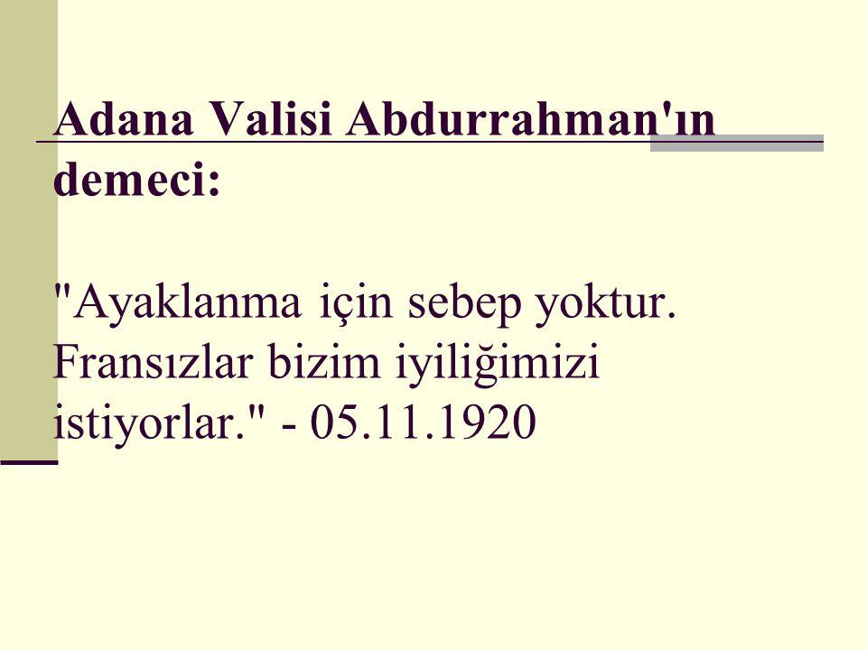 Adana Valisi Abdurrahman'ın demeci: