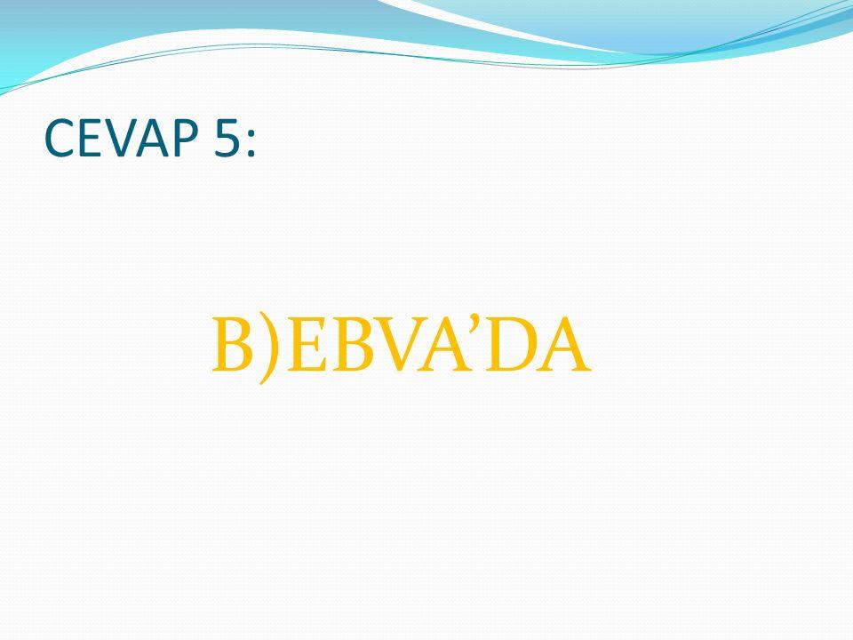 CEVAP 5: B)EBVA'DA