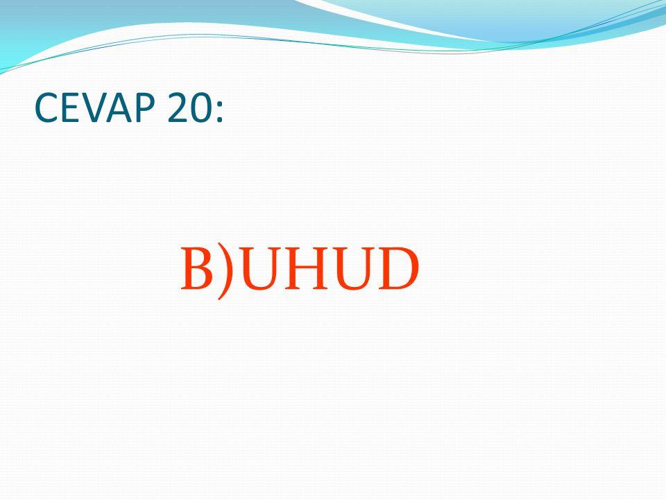 CEVAP 20: B)UHUD