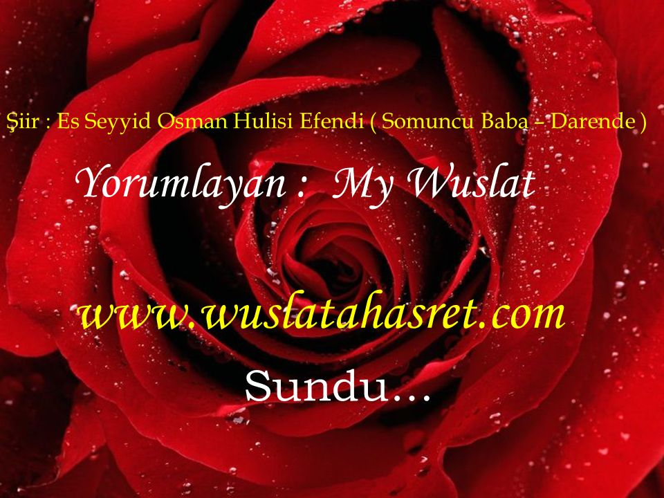 Şiir : Es Seyyid Osman Hulisi Efendi ( Somuncu Baba – Darende ) Yorumlayan : My Wuslat www.wuslatahasret.com Sundu…