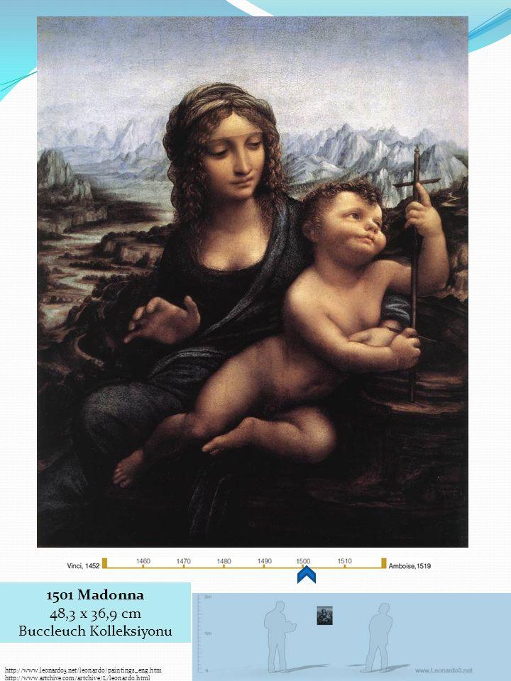 http://www.leonardo3.net/leonardo/paintings_eng.htm http://www.artchive.com/artchive/L/leonardo.html 1501 Madonna 48,3 x 36,9 cm Buccleuch Kolleksiyonu