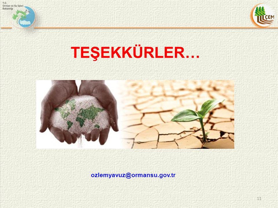 TEŞEKKÜRLER… ozlemyavuz@ormansu.gov.tr 11