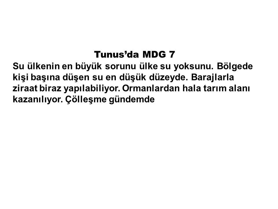 Tunus'da MDG 7 Su ülkenin en büyük sorunu ülke su yoksunu.