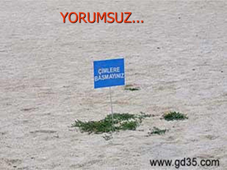 ARİF ÇINAR REHBER ÖĞRETMEN 21YORUMSUZ...