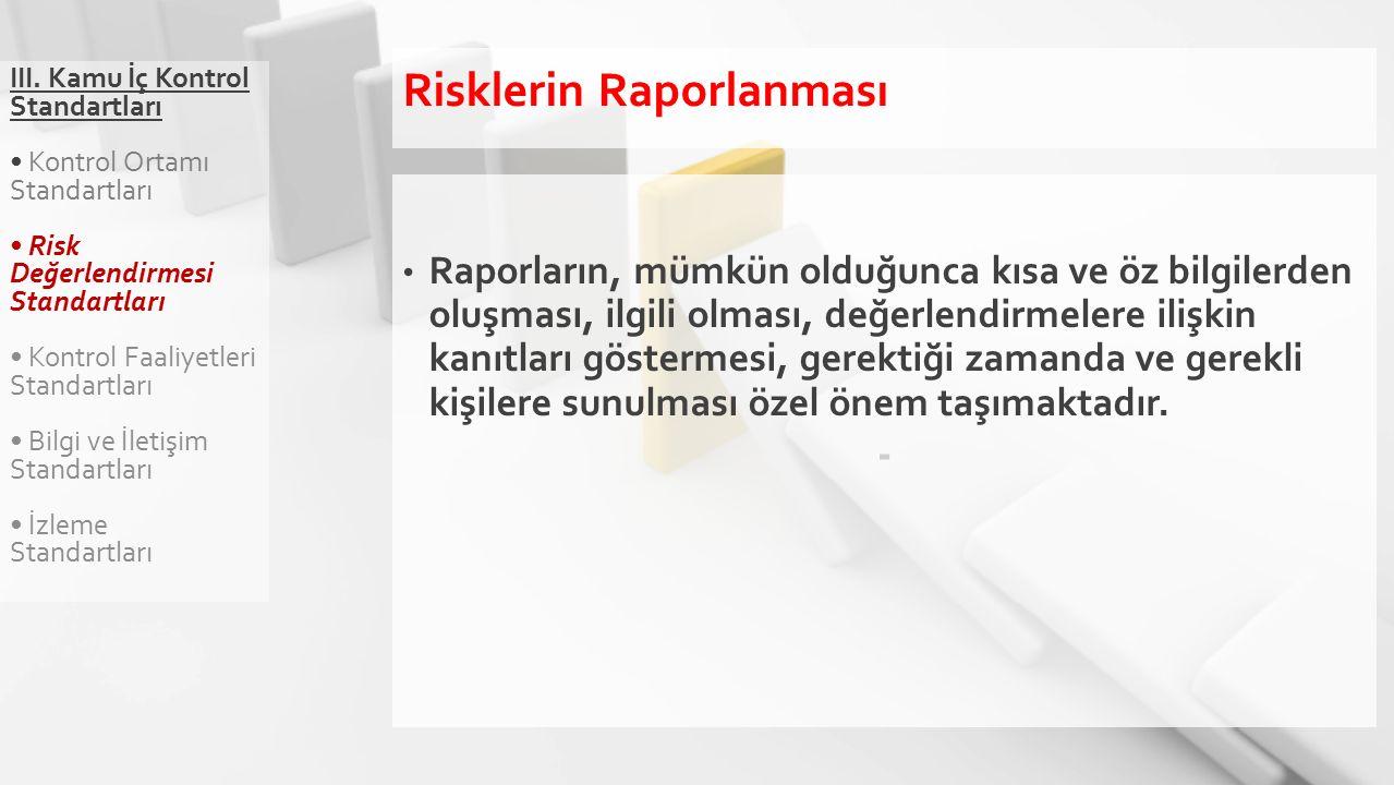 III. Kamu İç Kontrol Standartları Kontrol Ortamı Standartları Risk Değerlendirmesi Standartları Kontrol Faaliyetleri Standartları Bilgi ve İletişim St