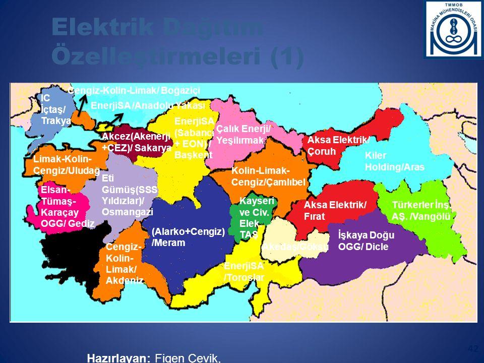 Elektrik Dağıtım Özelleştirmeleri (1) Aydem Aş.