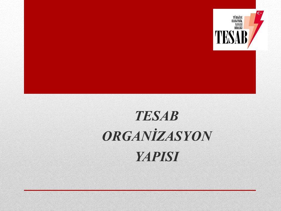 TESAB ORGANİZASYON YAPISI
