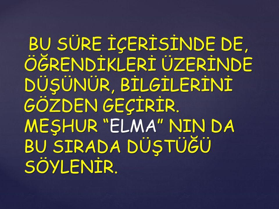 """BU SÜRE İÇERİSİNDE DE, ÖĞRENDİKLERİ ÜZERİNDE DÜŞÜNÜR, BİLGİLERİNİ GÖZDEN GEÇİRİR. MEŞHUR """"ELMA"""" NIN DA BU SIRADA DÜŞTÜĞÜ SÖYLENİR."""