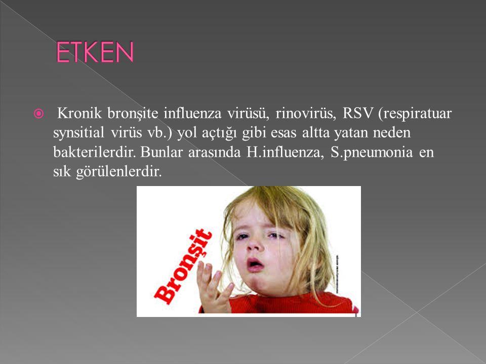  Kronik bronşite influenza virüsü, rinovirüs, RSV (respiratuar synsitial virüs vb.) yol açtığı gibi esas altta yatan neden bakterilerdir.