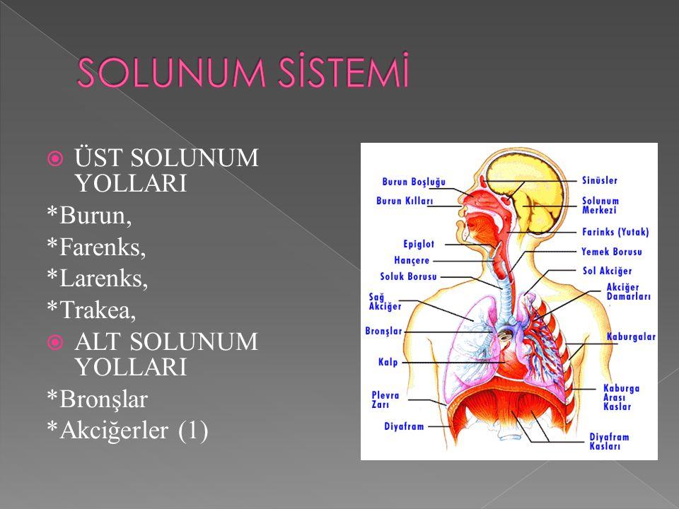  Arter kan gazı değerleri izlenir. Doktor istemine göre ilaçlar verilir.