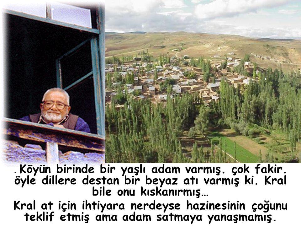 ACELE KARAR VERMEYİN S.S.