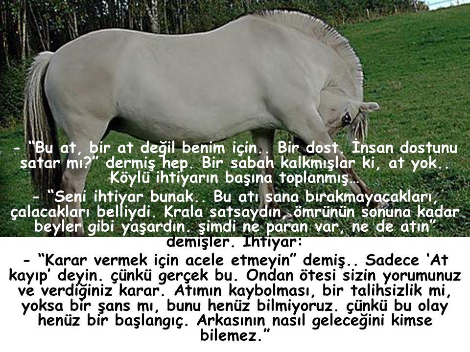 Köyün birinde bir yaşlı adam varmış.çok fakir. öyle dillere destan bir beyaz atı varmış ki.