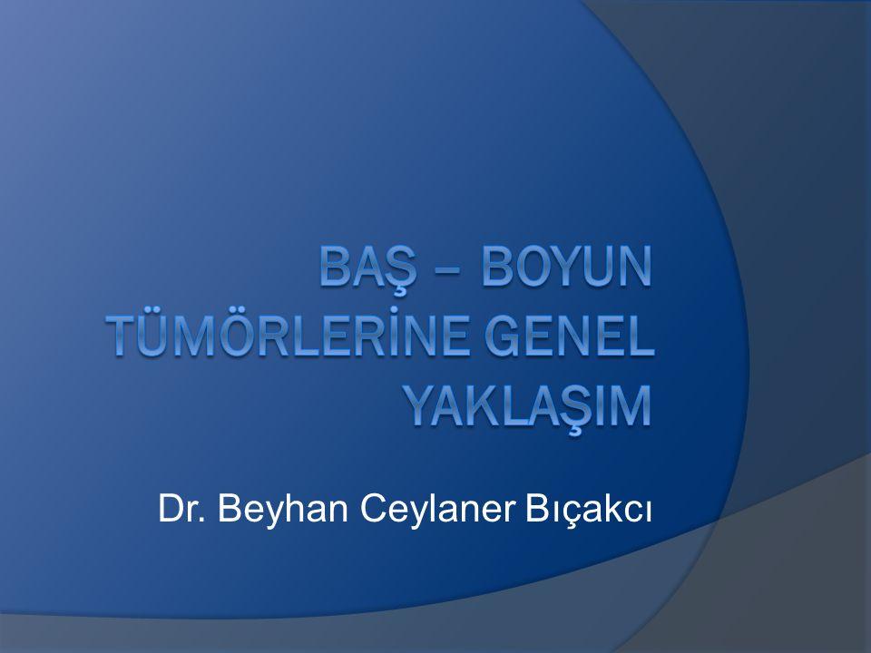 Dr. Beyhan Ceylaner Bıçakcı