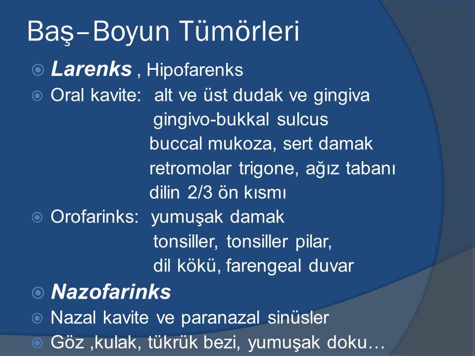 Baş–Boyun Tümörleri  Larenks, Hipofarenks  Oral kavite: alt ve üst dudak ve gingiva gingivo-bukkal sulcus buccal mukoza, sert damak retromolar trigo