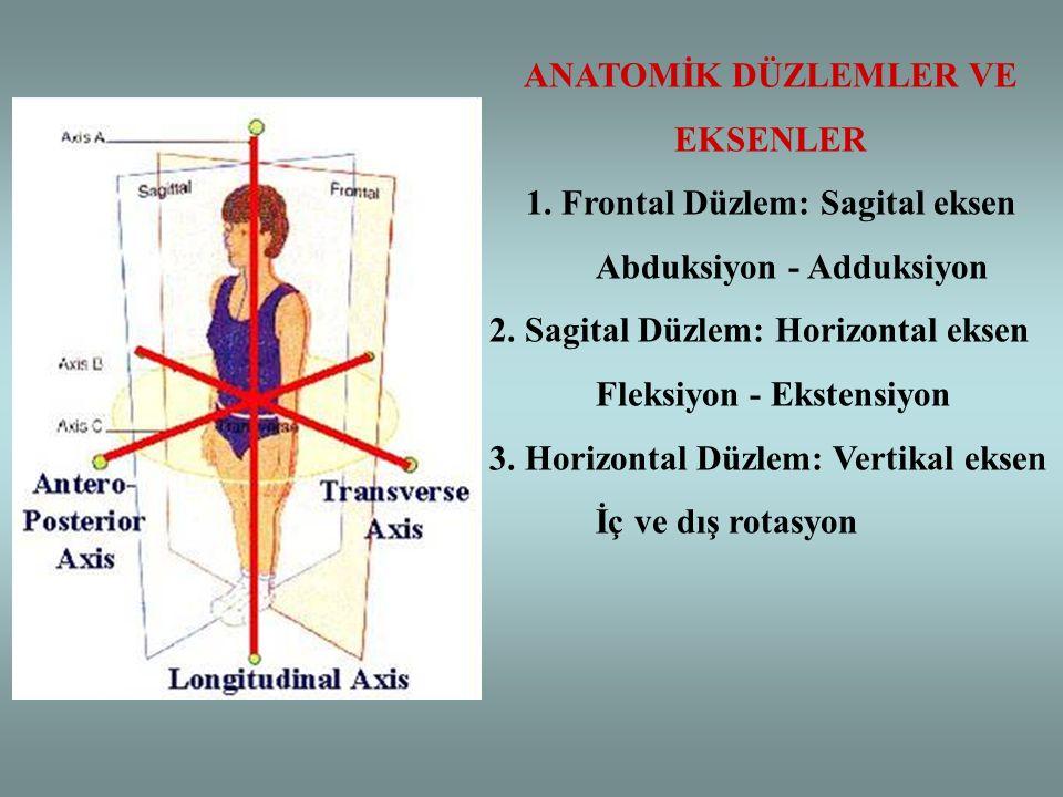 ANATOMİK DÜZLEMLER VE EKSENLER 1. Frontal Düzlem: Sagital eksen Abduksiyon - Adduksiyon 2. Sagital Düzlem: Horizontal eksen Fleksiyon - Ekstensiyon 3.