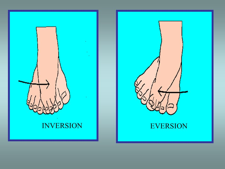 INVERSION EVERSION