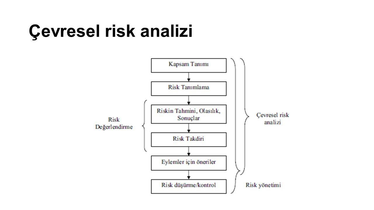 Çevresel risk analizi