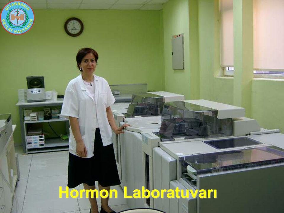 Hormon Laboratuvarı