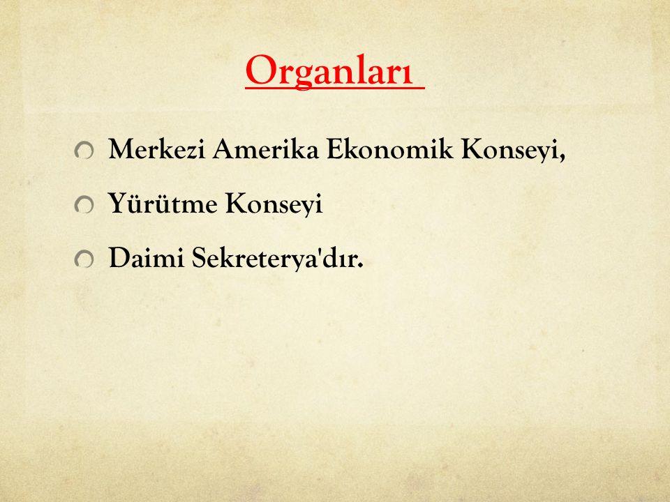 Organları Merkezi Amerika Ekonomik Konseyi, Yürütme Konseyi Daimi Sekreterya'dır.
