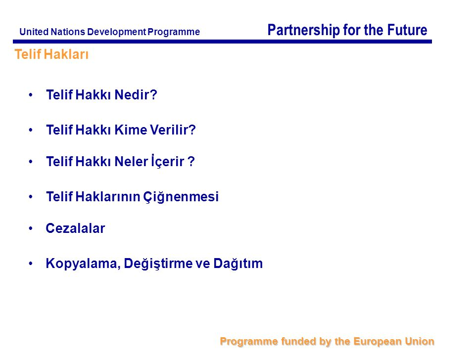 Partnership for the Future Programme funded by the European Union United Nations Development Programme Telif Hakları