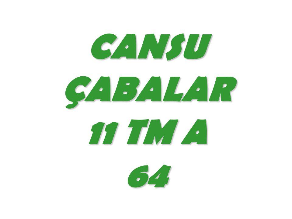 CANSU ÇABALAR 11 TM A 64